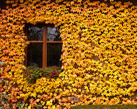 Prepare Your CRM for Fall Selling Season
